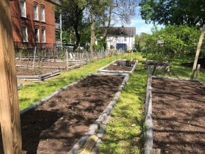 Affleck Gardens 1